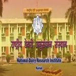 ICAR-NDRI Recruitment 2021 Apply Online for 12 Young Professional JRF SRF and Office Assistant Jobs Vacancy